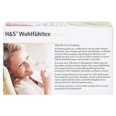 H&S Misteltee Mischung mit Zitronengras Filterbtl. 20x2.0 Gramm - Rückseite