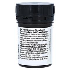 SCHÜSSLER Nr.4 Kalium chloratum D 6 Tabletten 200 Stück - Rückseite