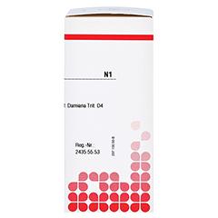 DAMIANA D 4 Tabletten 80 Stück N1 - Rechte Seite