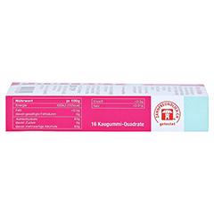 BADERS Protect Gum Zahnfleischpflege 16 Stück - Linke Seite