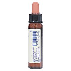 BACHBLÜTEN Chicory Healing Herbs Tropfen + gratis 5Flower Creme 15g 10 Milliliter - Linke Seite