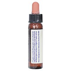 BACHBLÜTEN Mimulus Healing Herbs Tropfen 10 Milliliter - Rechte Seite