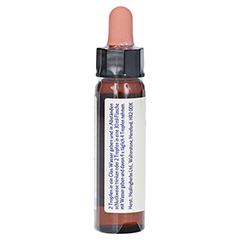 BACHBLÜTEN Olive Healing Herbs Tropfen + gratis 5Flower Creme 15g 10 Milliliter - Rechte Seite
