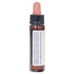 BACHBLÜTEN Water Violet Healing Herbs Tropfen 10 Milliliter - Rechte Seite