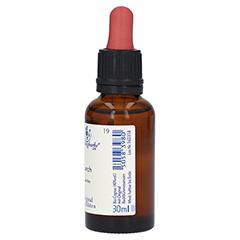 BACHBLÜTEN Larch Healing Herbs Tropfen 30 Milliliter - Linke Seite