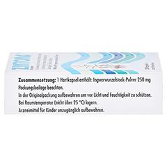Zintona 20 Stück - Rechte Seite