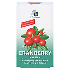 CRANBERRY KAPSELN 400 mg + gratis Cranberry Tee 240 Stück - Vorderseite