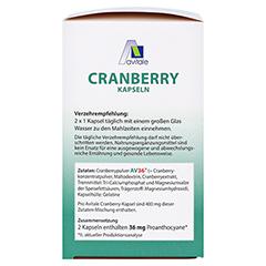 CRANBERRY KAPSELN 400 mg + gratis Cranberry Tee 240 Stück - Linke Seite