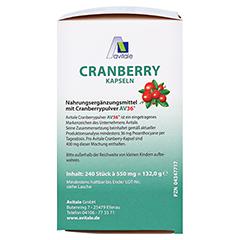 CRANBERRY KAPSELN 400 mg + gratis Cranberry Tee 240 Stück - Rechte Seite