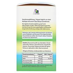 GLUCOSAMIN 500 mg+Chondroitin 400 mg Kapseln + gratis Teufelskrallen Gel 180 Stück - Linke Seite