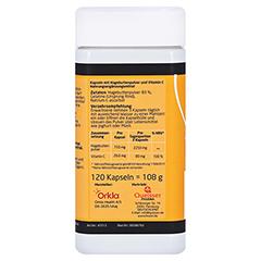 Litozin Ultra Hagebuttenpulver + Vitamin C 120 Stück - Linke Seite