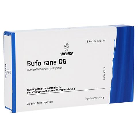 BUFO RANA D 6 Ampullen 8x1 Milliliter N1