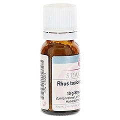 RHUS TOXICODENDRON D 4 Globuli 10 Gramm N1 - Linke Seite