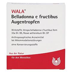 BELLADONNA E FRUCTIBUS Augentropfen 5x0.5 Milliliter N1 - Vorderseite