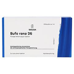 BUFO RANA D 6 Ampullen 8x1 Milliliter N1 - Vorderseite