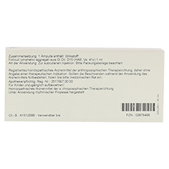 FOLLICULI LYMPH. AGGR. GL D 15 Ampullen 10x1 Milliliter N1 - Rückseite