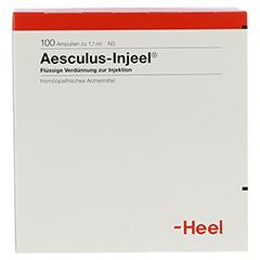 AESCULUS INJEEL Ampullen 100 Stück N3 - Rückseite