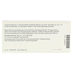 RECTUM GL D 6 Ampullen 10x1 Milliliter N1 - Rückseite