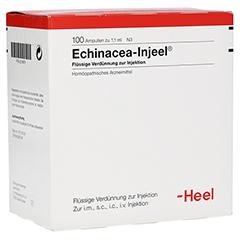 ECHINACEA INJEEL Ampullen 100 Stück N3