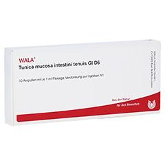 TUNICA mucosa intestini tenuis GL D 6 Ampullen 10x1 Milliliter N1