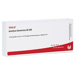 URETHRA feminina GL D 6 Ampullen 10x1 Milliliter N1