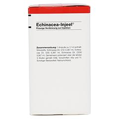 ECHINACEA INJEEL Ampullen 100 Stück N3 - Vorderseite