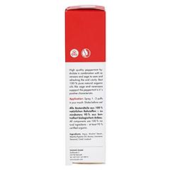MEDITAO Pfefferminz Mundwasser Spray 10 Milliliter - Linke Seite