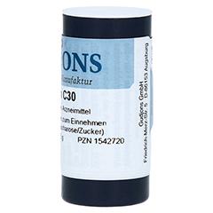 CONIUM C 30 Einzeldosis Globuli 0.5 Gramm N1 - Linke Seite