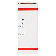 TARAXACUM D 1 Dilution 50 Milliliter N1 - Rechte Seite