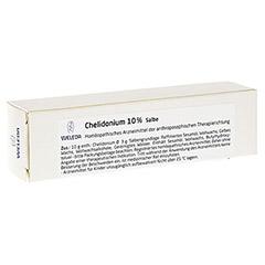 CHELIDONIUM 10% Salbe 25 Gramm N1