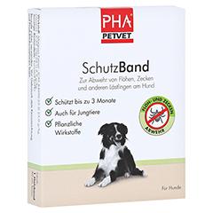 PHA SchutzBand f.große Hunde 1 Stück