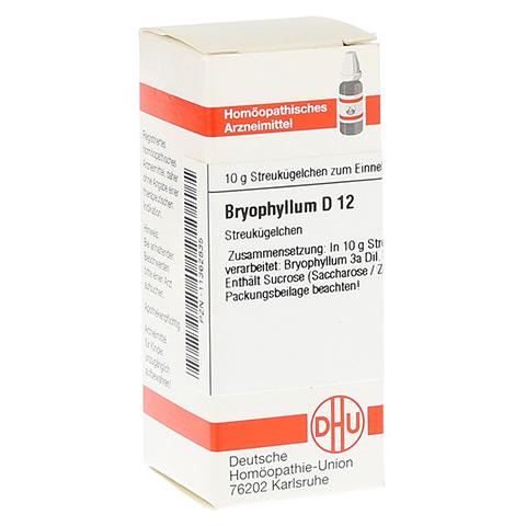 BRYOPHYLLUM D 12 Globuli 10 Gramm