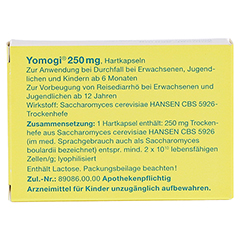 Yomogi 250mg 5Billionen Zellen 20 Stück N2 - Rückseite