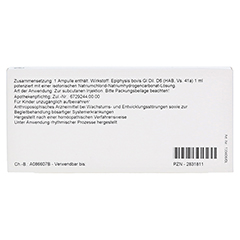 EPIPHYSIS GL D 6 Ampullen 10x1 Milliliter N1 - Rückseite