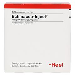 ECHINACEA INJEEL Ampullen 100 Stück N3 - Rückseite