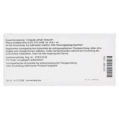 PLEXUS LUMBALIS GL D 15 Ampullen 10x1 Milliliter N1 - Rückseite