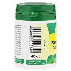 DARMREIN Pulver vet. 40 Gramm - Rückseite