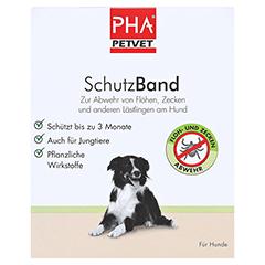 PHA SchutzBand f.große Hunde 1 Stück - Vorderseite