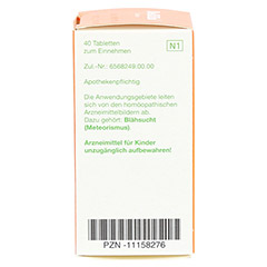 MAMA natura Bellilin Tabletten 40 Stück N1 - Rechte Seite