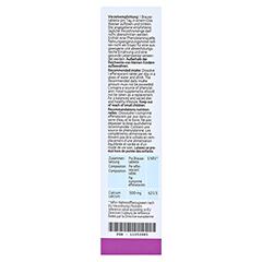 CALCIUM ACTIVE Denk 500 mg Brausetabletten 20 Stück - Rückseite