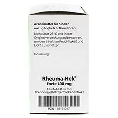 Rheuma-Hek forte 600mg 100 Stück N3 - Rechte Seite