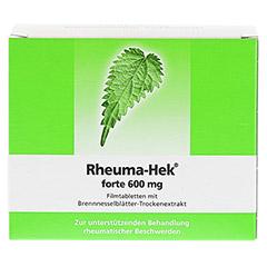 Rheuma-Hek forte 600mg 100 Stück N3 - Rückseite