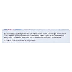 EMSER Nasensalbe Sensitiv 8 Gramm - Unterseite