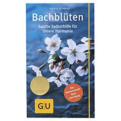 GU Bachblüten Kompass 1 Stück