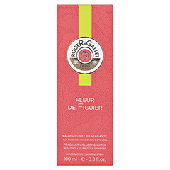 R&G Fleur de Figuier Duft 100 Milliliter - Vorderseite