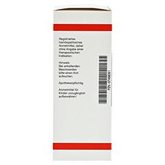 CHRYSANTHEMUM parthenium D 1 Dilution 50 Milliliter - Linke Seite