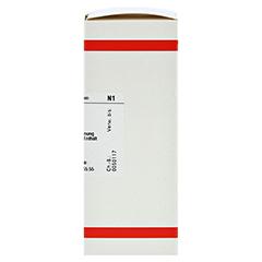 HYDROCOTYLE asiatica D 2 Dilution 50 Milliliter N1 - Rechte Seite