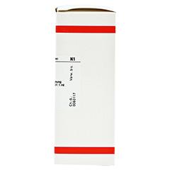 CHRYSANTHEMUM parthenium D 1 Dilution 50 Milliliter - Rechte Seite