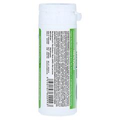 MIRADENT Zahnpflegekaugummi Xylitol grüner Tee 30 Stück - Rückseite