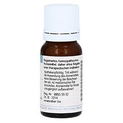 HYPERICUM PERFORATUM D 30 Globuli 10 Gramm N1 - Rückseite